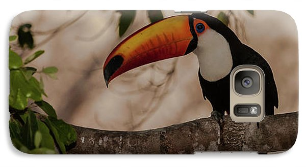 Close-up Of Tocu Toucan Ramphastos Toco Galaxy Case by Panoramic Images