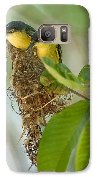 Flycatcher Galaxy S7 Case - Close-up Of Two Common Tody-flycatchers by Panoramic Images