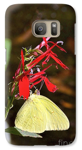 Galaxy Case featuring the photograph Cloudless Sulphur On Cardinal Flower by Susi Stroud