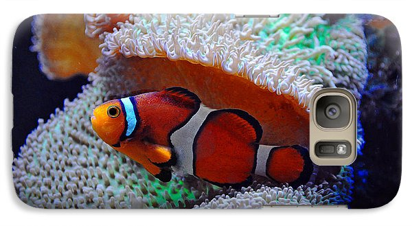 Galaxy Case featuring the photograph Clown Fish by Savannah Gibbs