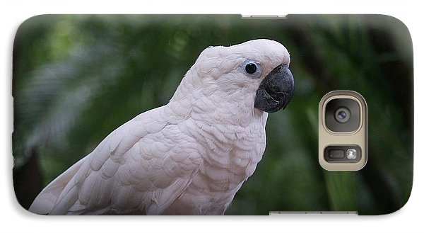 Galaxy Case featuring the photograph Cockatoo by Athala Carole Bruckner