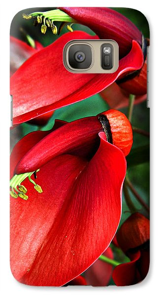 Galaxy Case featuring the photograph Cockspur Coral Tree by William Tanneberger