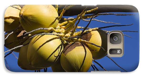 Galaxy Case featuring the photograph Coconut 1 by Teresa Zieba