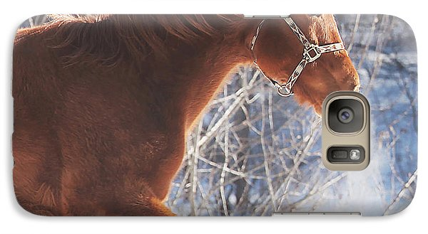 Horse Galaxy S7 Case - Cold by Carrie Ann Grippo-Pike