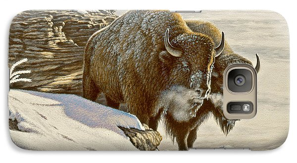 Buffalo Galaxy S7 Case - 'cold Day At Soda Butte' by Paul Krapf