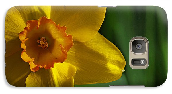 Galaxy Case featuring the photograph Color Of Spring by Rowana Ray