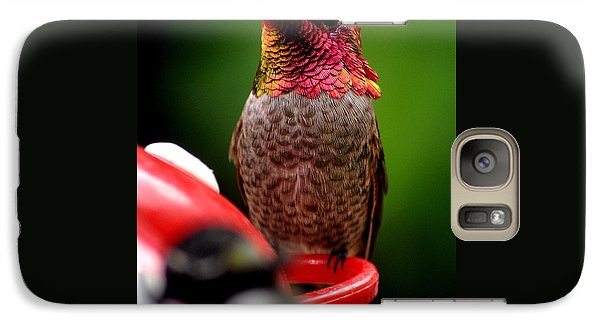 Galaxy Case featuring the photograph Colorful Male Anna Hummingbird On Perch by Jay Milo