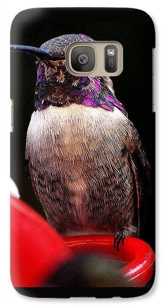 Galaxy Case featuring the photograph Colorful White Eared Male Hummingbird Anna Posing On Perch by Jay Milo
