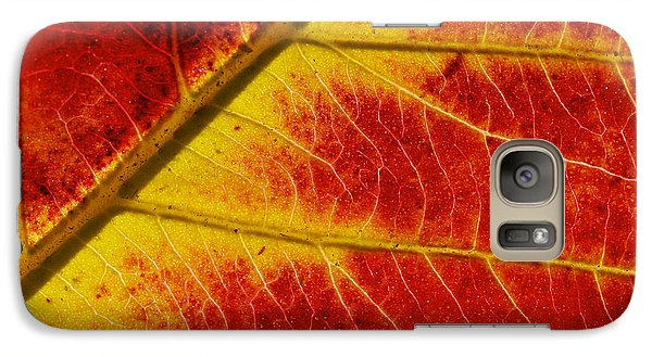 Galaxy Case featuring the photograph Colors Of Autumn by Meir Ezrachi
