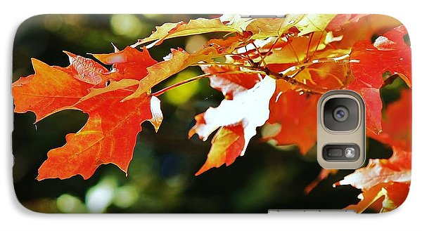 Galaxy Case featuring the photograph Colours Of Fall by Al Fritz