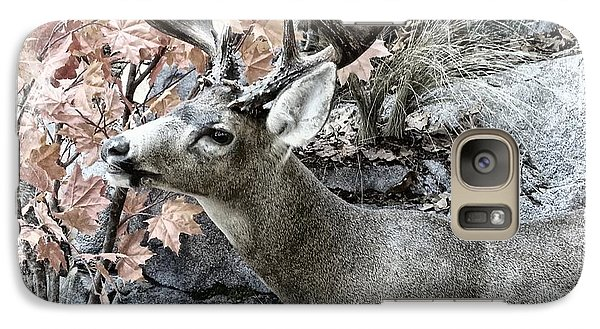 Galaxy Case featuring the photograph Columbia Blacktail Deer by Aaron Berg