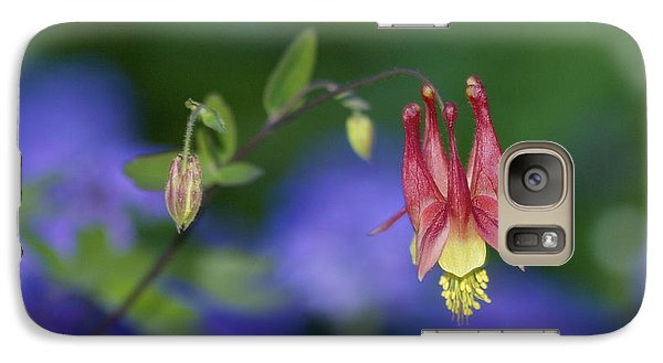 Galaxy Case featuring the photograph Columbine And Verbena by Jane Eleanor Nicholas