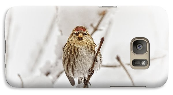Finch Galaxy S7 Case - Common Redpoll by Susan Capuano