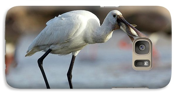 Spoonbill Galaxy S7 Case - Common Spoonbill (platalea Leucorodia) by Photostock-israel