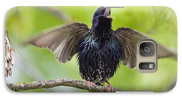 Common Starling Singing Bavaria Galaxy S7 Case by Konrad Wothe