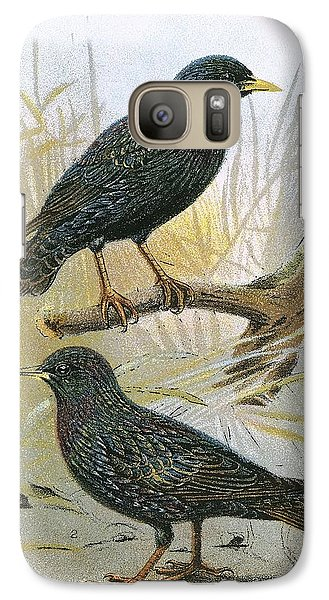 Common Starling Top And Intermediate Starling Bottom Galaxy S7 Case
