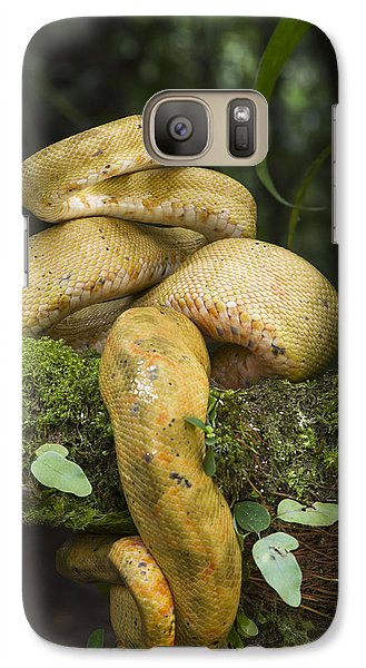 Common Tree Boa -yellow Morph Galaxy S7 Case by Pete Oxford