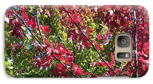 Galaxy Case featuring the photograph Complimentary Colors by Debbie Hart