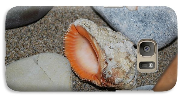 Galaxy Case featuring the photograph Conch 1 by George Katechis