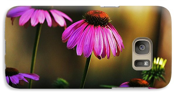 Galaxy Case featuring the photograph Cone Flower Shines... by Al Fritz
