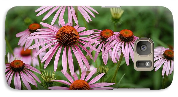Galaxy Case featuring the photograph Cone Flowers by Donald Williams