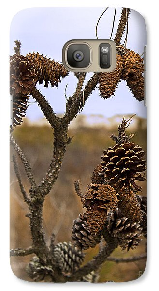 Galaxy Case featuring the photograph Cones by Robert Pilkington