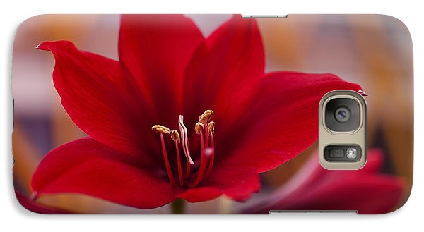Galaxy Case featuring the photograph Content Tropics by Miguel Winterpacht