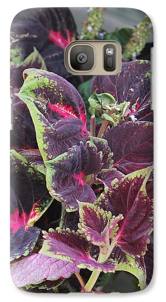 Galaxy Case featuring the photograph Cool Coleous by Bill Woodstock