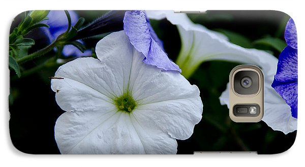 Galaxy Case featuring the photograph Cool Summer Petunias by Wilma  Birdwell