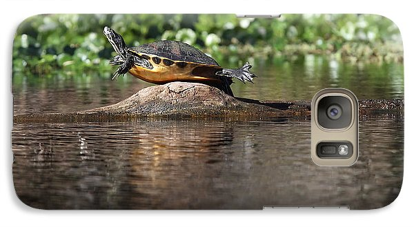 Galaxy Case featuring the photograph Cooter On Alligator Log by Paul Rebmann