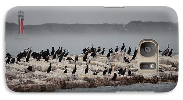 Galaxy Case featuring the photograph Cormorant Island by Debra Martz