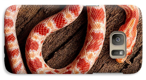 Galaxy Case featuring the photograph Corn Snake P. Guttatus On Tree Bark by David Kenny