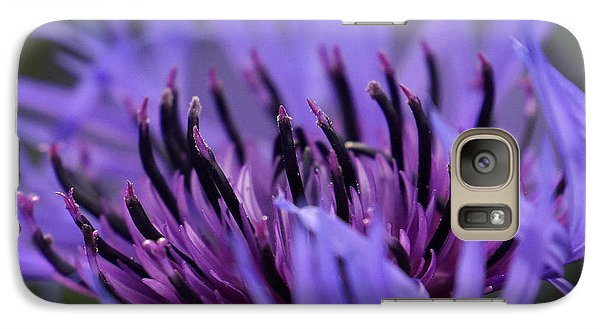 Galaxy Case featuring the photograph Cornflower by Inge Riis McDonald