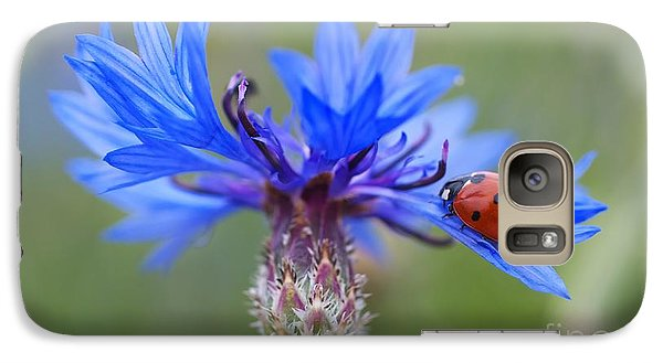 Galaxy Case featuring the photograph Cornflower Ladybug Siebenpunkt Blue Red Flower by Paul Fearn