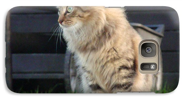 Galaxy Case featuring the photograph Cougar The Barn Cat 2 by Barbie Batson
