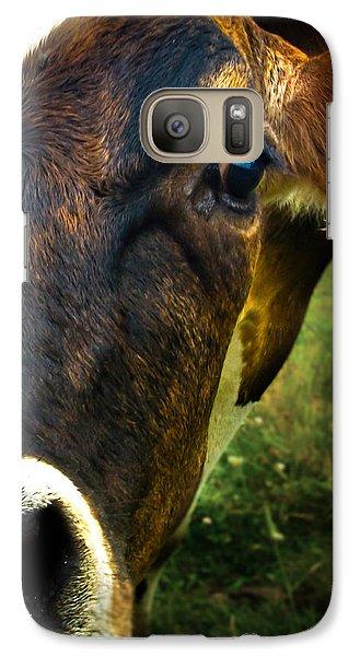 Cow Eating Grass Galaxy S7 Case by Bob Orsillo