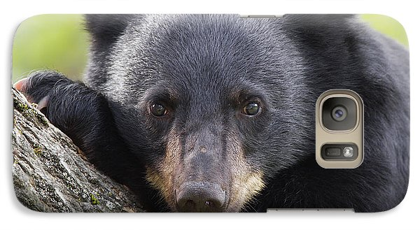 Galaxy Case featuring the photograph Coy Watching by Gerry Sibell