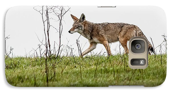 Galaxy Case featuring the photograph Coyote by Brian Williamson