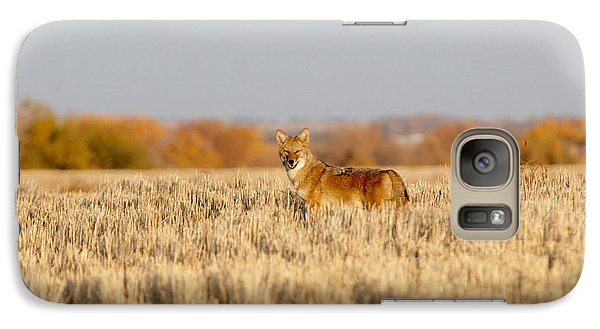 Galaxy Case featuring the photograph Coyote On The Hunt by Shirley Heier