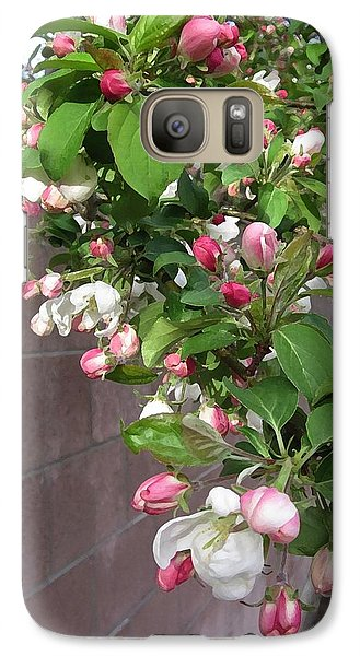 Crabapple Blossoms And Wall Galaxy S7 Case