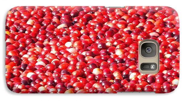 Galaxy Case featuring the photograph Cranberries by Jodi Terracina