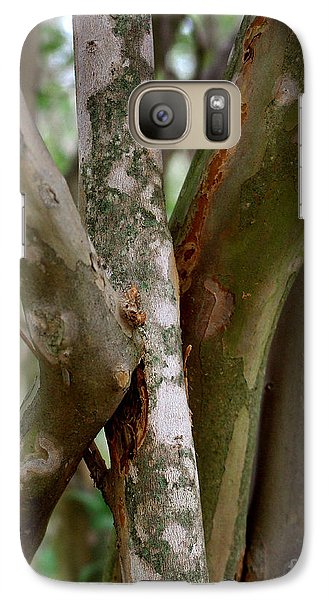 Galaxy Case featuring the photograph Crape Myrtle Branches by Peter Piatt
