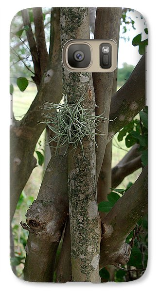 Galaxy Case featuring the photograph Crape Myrtle Growth Ball by Peter Piatt