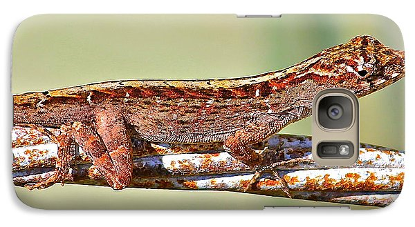 Galaxy Case featuring the photograph Crawling Lizard by Cyril Maza