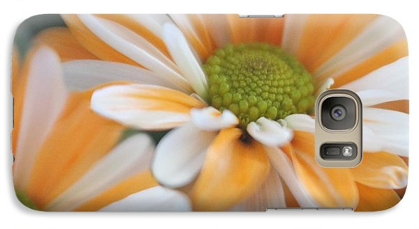 Galaxy Case featuring the photograph Creamsicle Daisies by Mary Lou Chmura