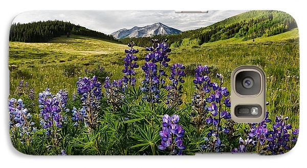 Galaxy Case featuring the photograph Crested Butte Lupines by Ronda Kimbrow