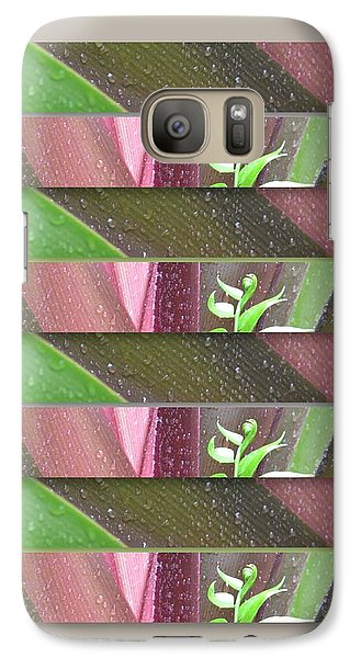 Galaxy Case featuring the photograph Crinum Lily Collage3 by Darla Wood