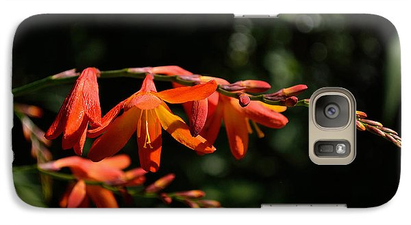 Galaxy Case featuring the photograph Crocosmia 'dusky Maiden' Flowers by Scott Lyons
