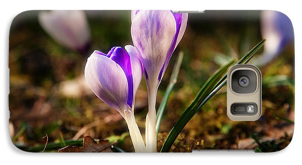 Galaxy Case featuring the photograph Crocus by Christine Sponchia