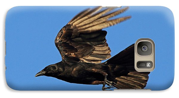 Galaxy Case featuring the photograph Crow In Flight by Meg Rousher